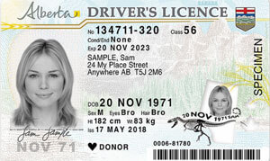 AB driver's licence