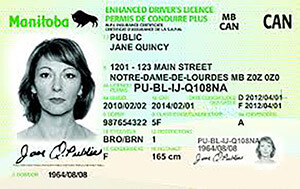 MB driver's licence