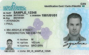 NB driver's licence