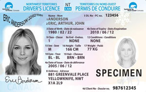 NT driver's licence