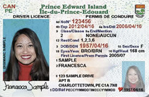 PE driver's licence