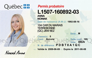 QC driver's licence