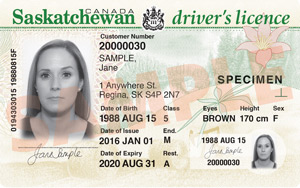 SK driver's licence